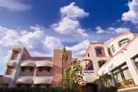Hotel Flora - Ischia-1