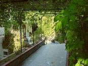 Hotel La Mandorla - Barano di Ischia-3