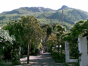 Hotel Terme Tusculum - Giardino