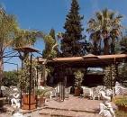 Villa al Parco - Forio di Ischia-1