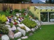 Family Hotel & Welness Centro Pineta - Pinzolo-2