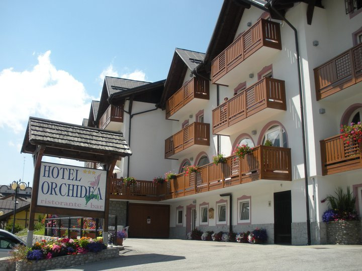 Hotel Orchidea - Hotel
