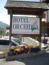 Hotel Orchidea - Val di Sole-3